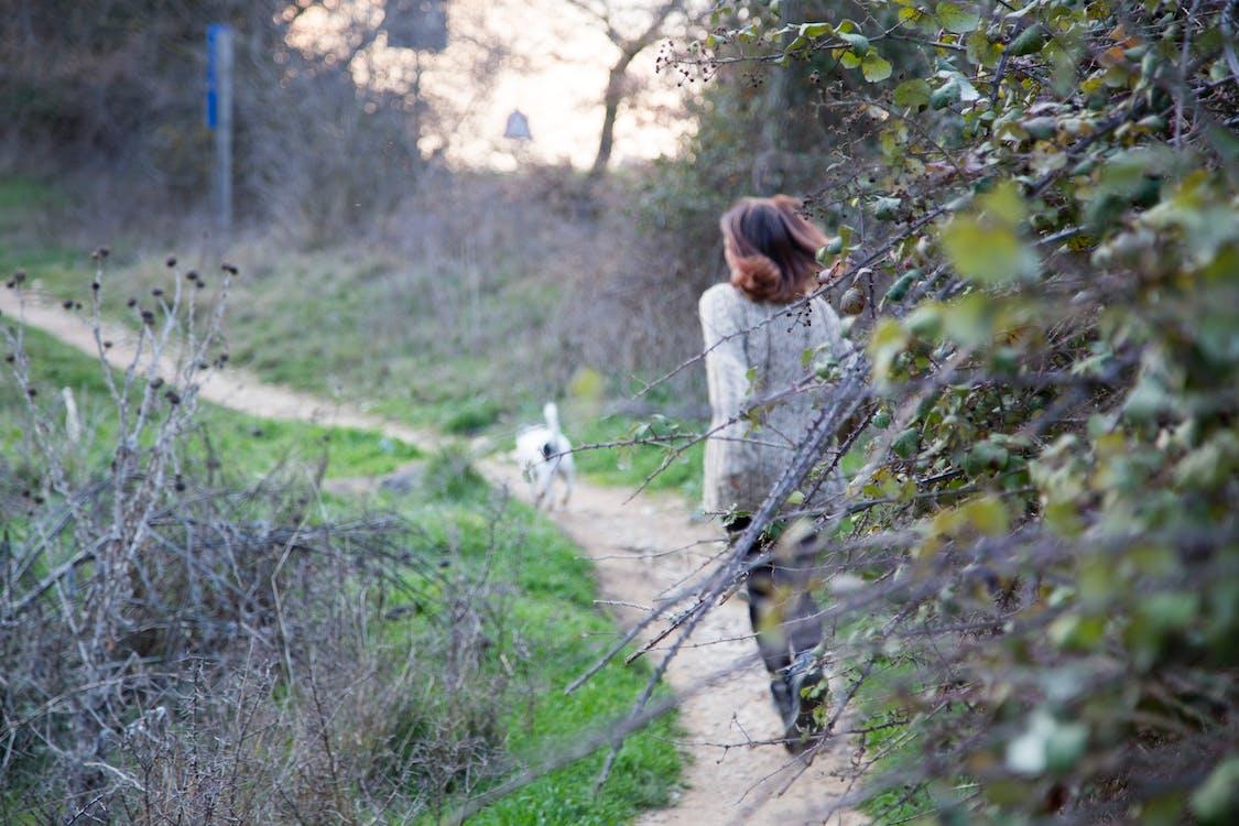 Безкоштовне стокове фото на тему «Дівчина, зелений, Природа»