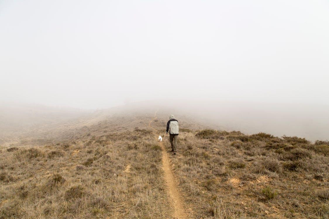 Безкоштовне стокове фото на тему «гори, ґрунт, Денне світло»