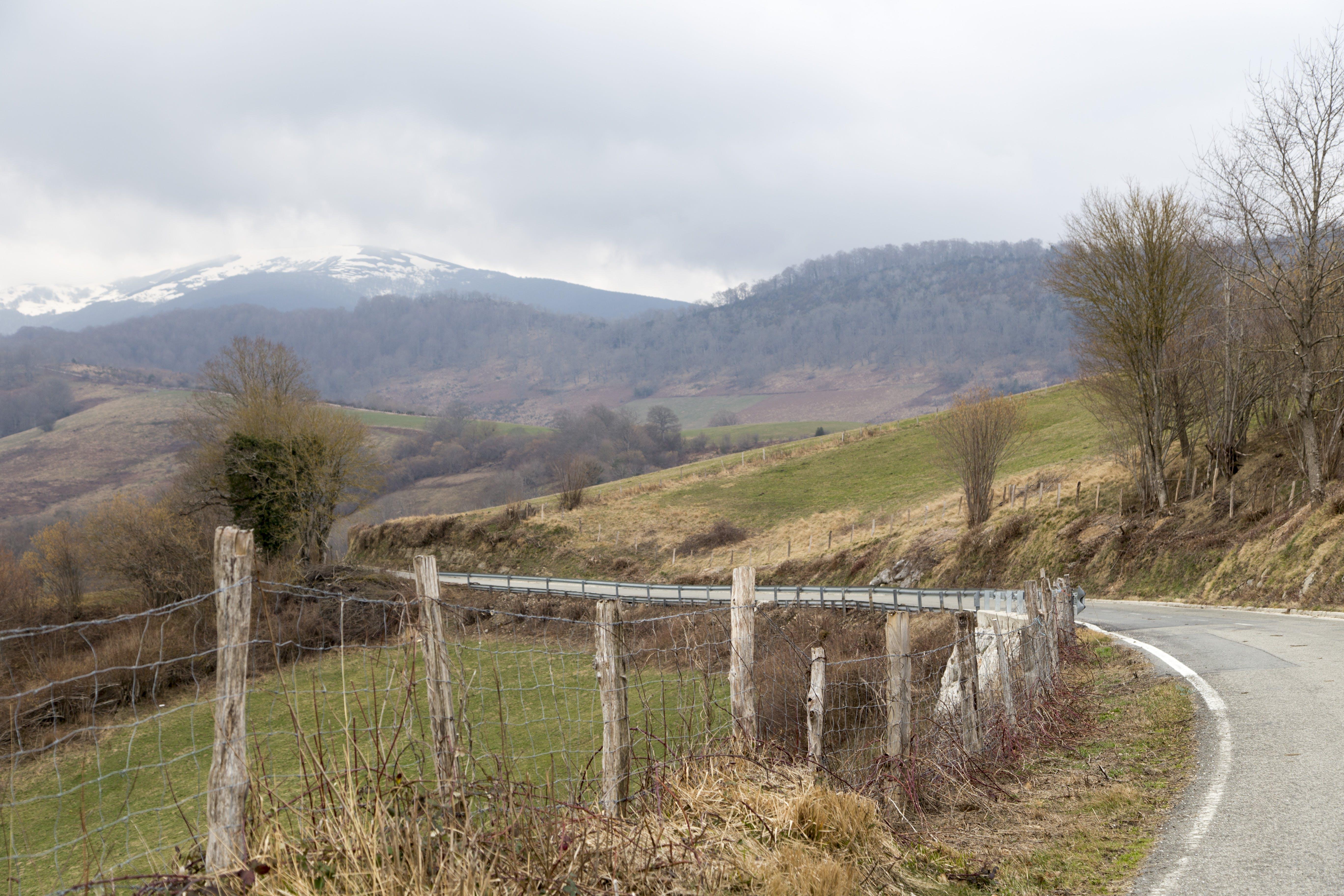 Základová fotografie zdarma na téma krajina, zimní krajina
