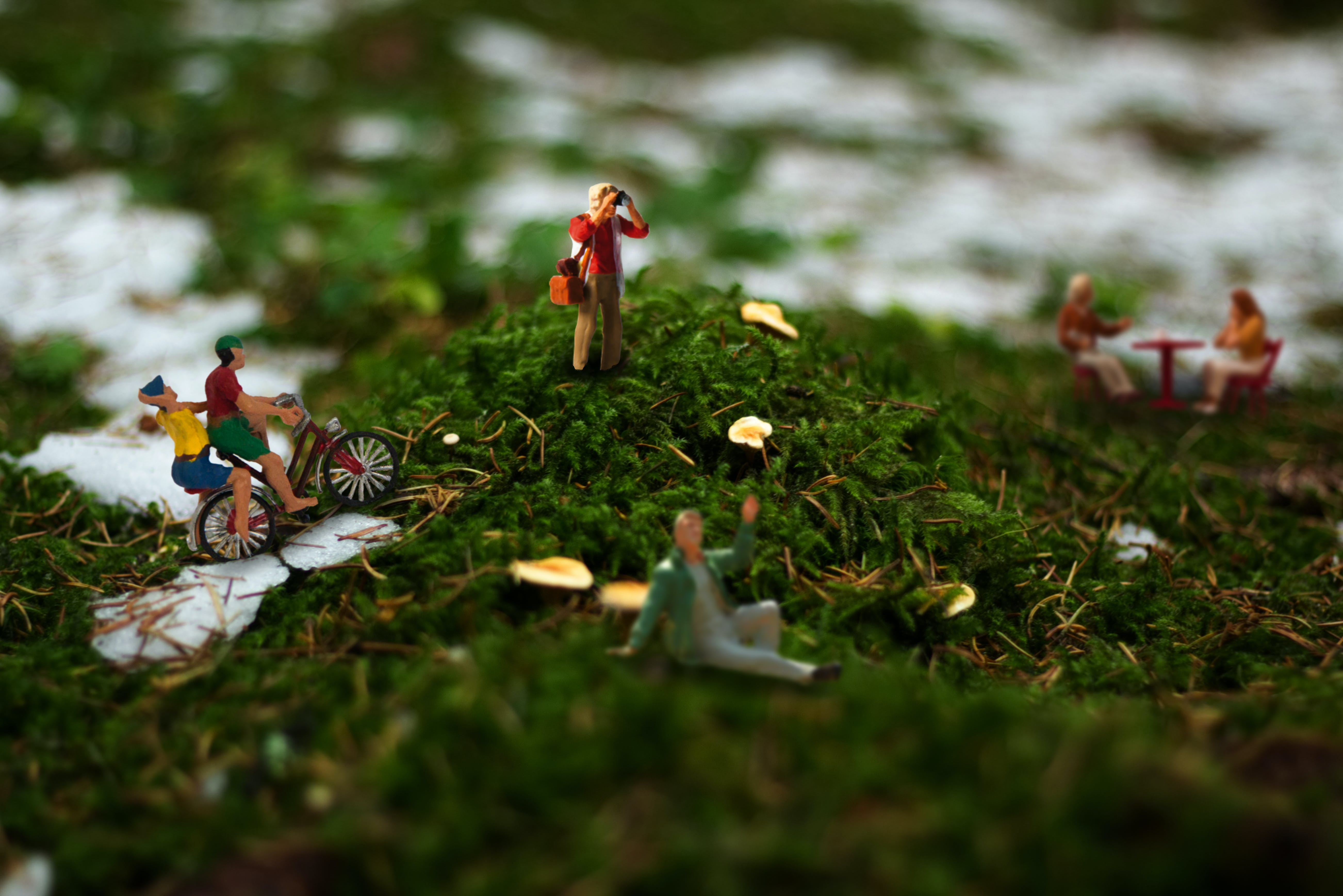 Human Figure Toys on Grass Field