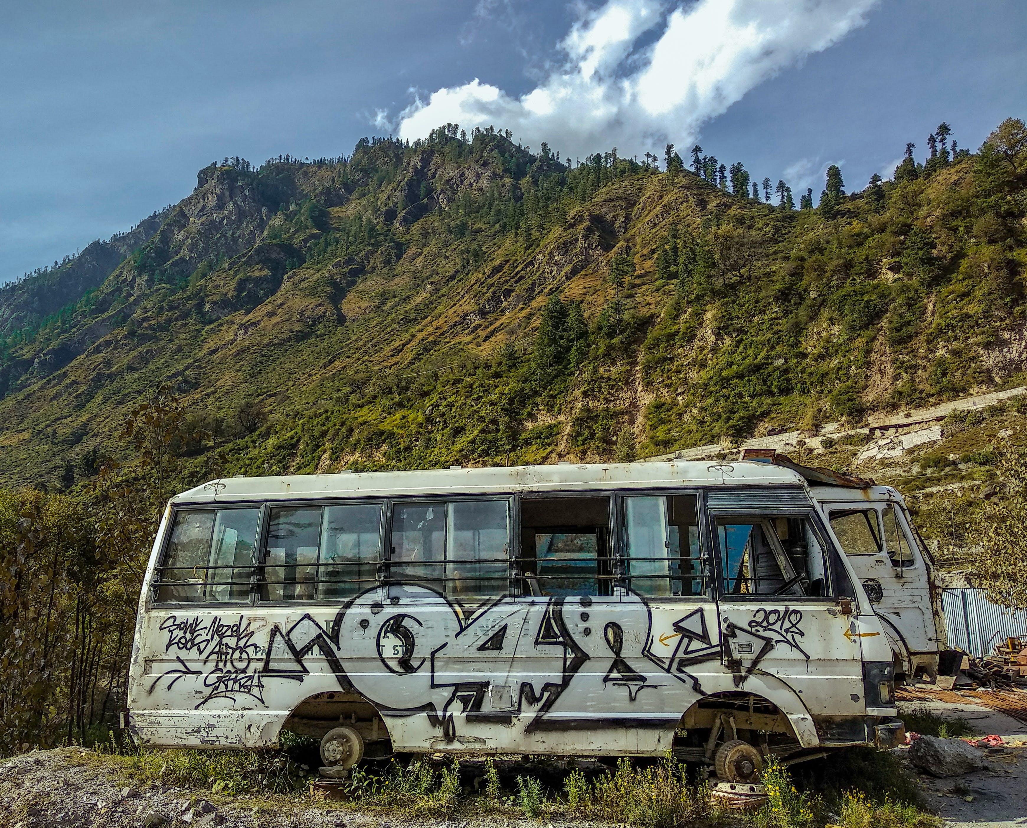 Foto profissional grátis de arte, árvores, céu azul, graffiti