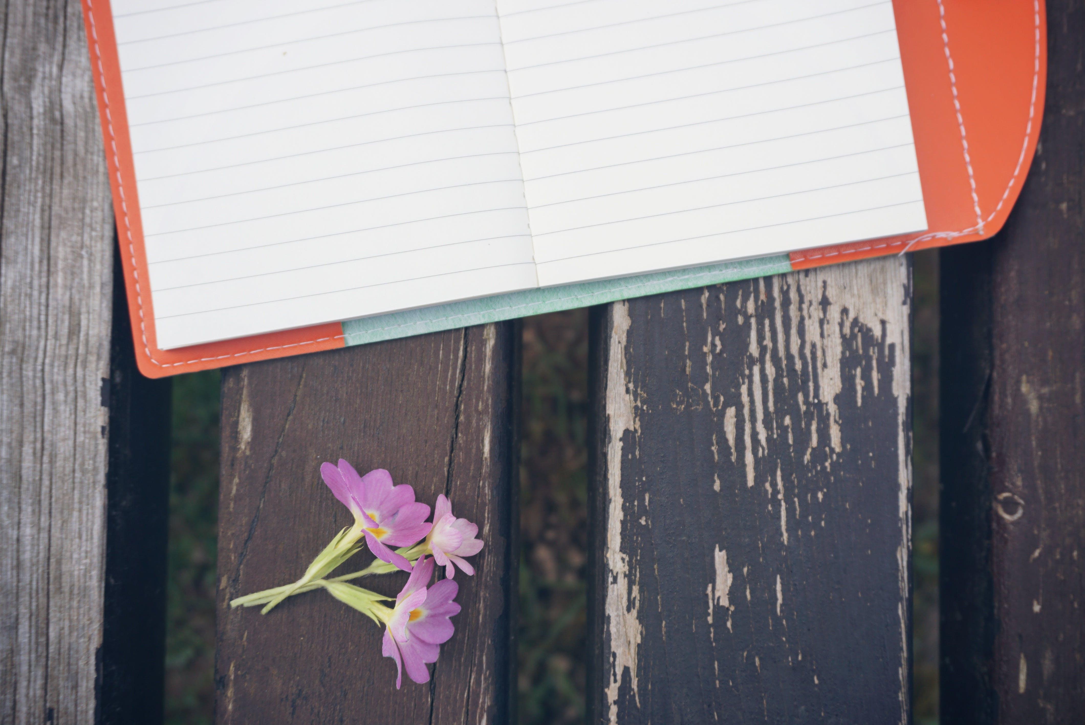Purple Petaled Flower Beside White Line Paper on Black Wooden Desk