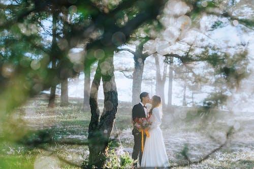 adam, ağaç gövdeleri, ağaçlar, alan derinliği içeren Ücretsiz stok fotoğraf