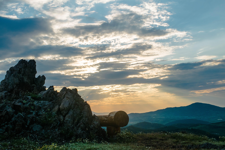 Δωρεάν στοκ φωτογραφιών με άγρια ζωή, βουνό