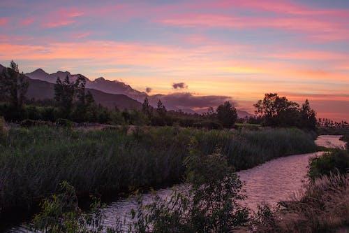 Gratis arkivbilde med Cape Town, daggry, gress, himmel