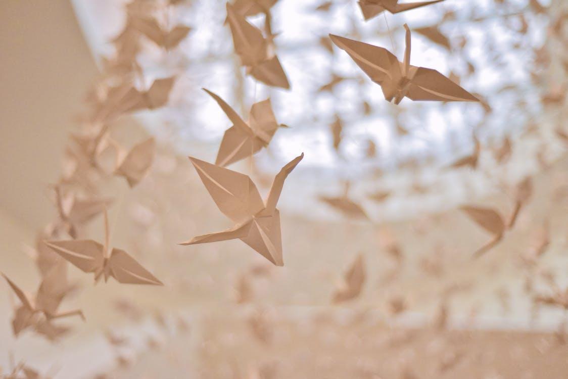 hängen, kraniche aus papier, kunst