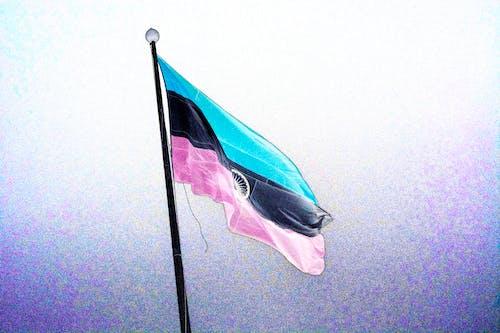 印度国旗 的 免费素材照片