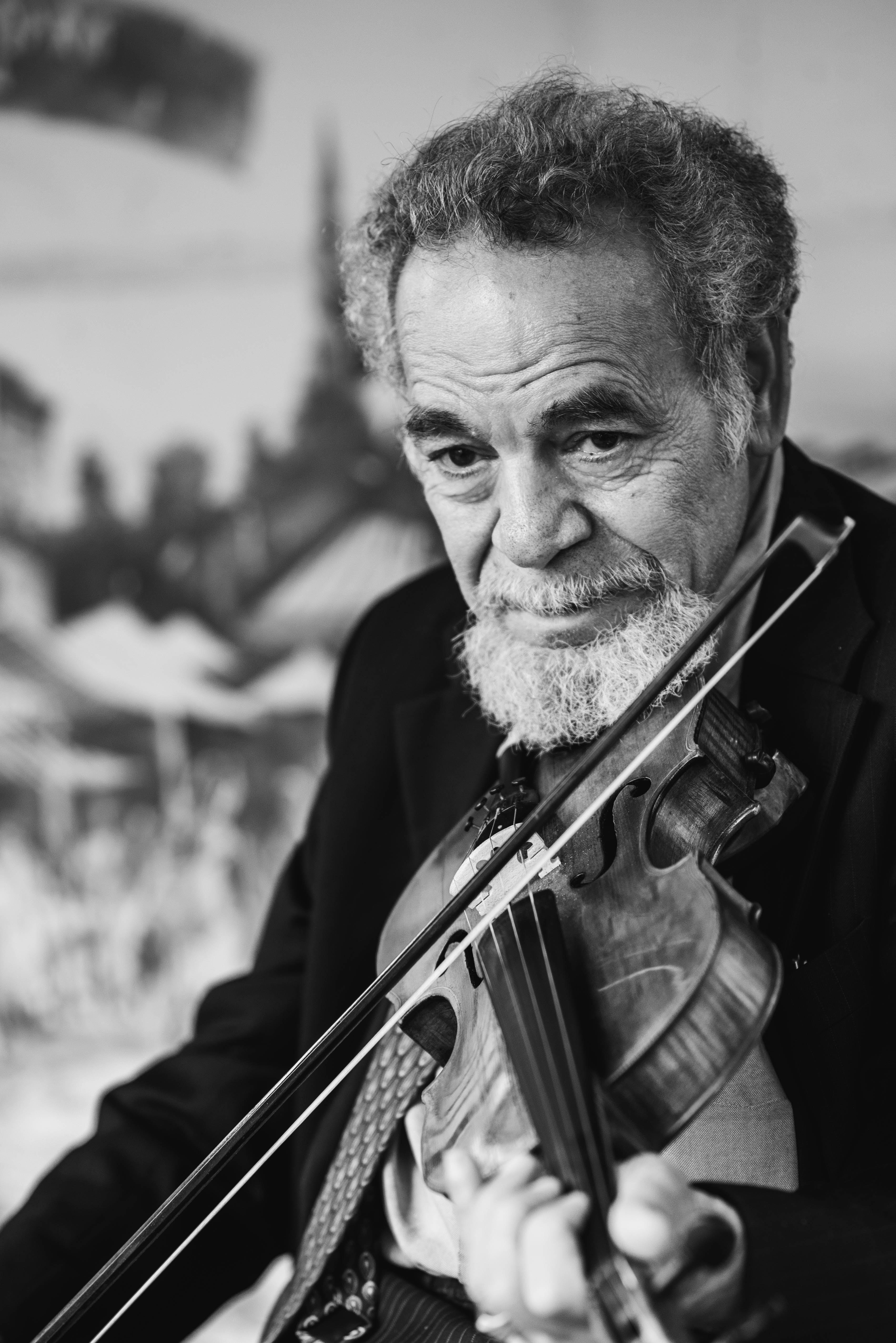 공연, 노인, 뮤지션, 바이올리니스트의 무료 스톡 사진
