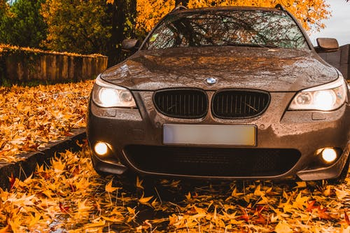 Parked Black Bmw Car Surrounded by Brown Leaves