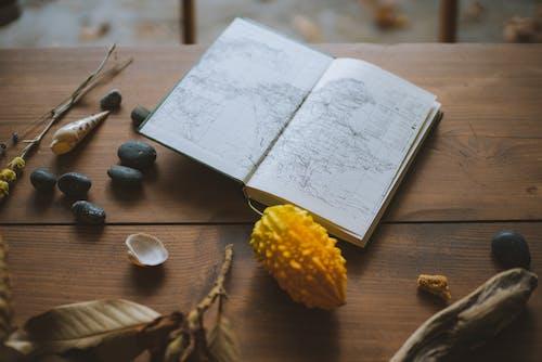 Ảnh lưu trữ miễn phí về bàn, bản đồ, gỗ, thành phần