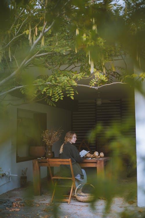 Imagine de stoc gratuită din arbore, citind, femeie, persoană