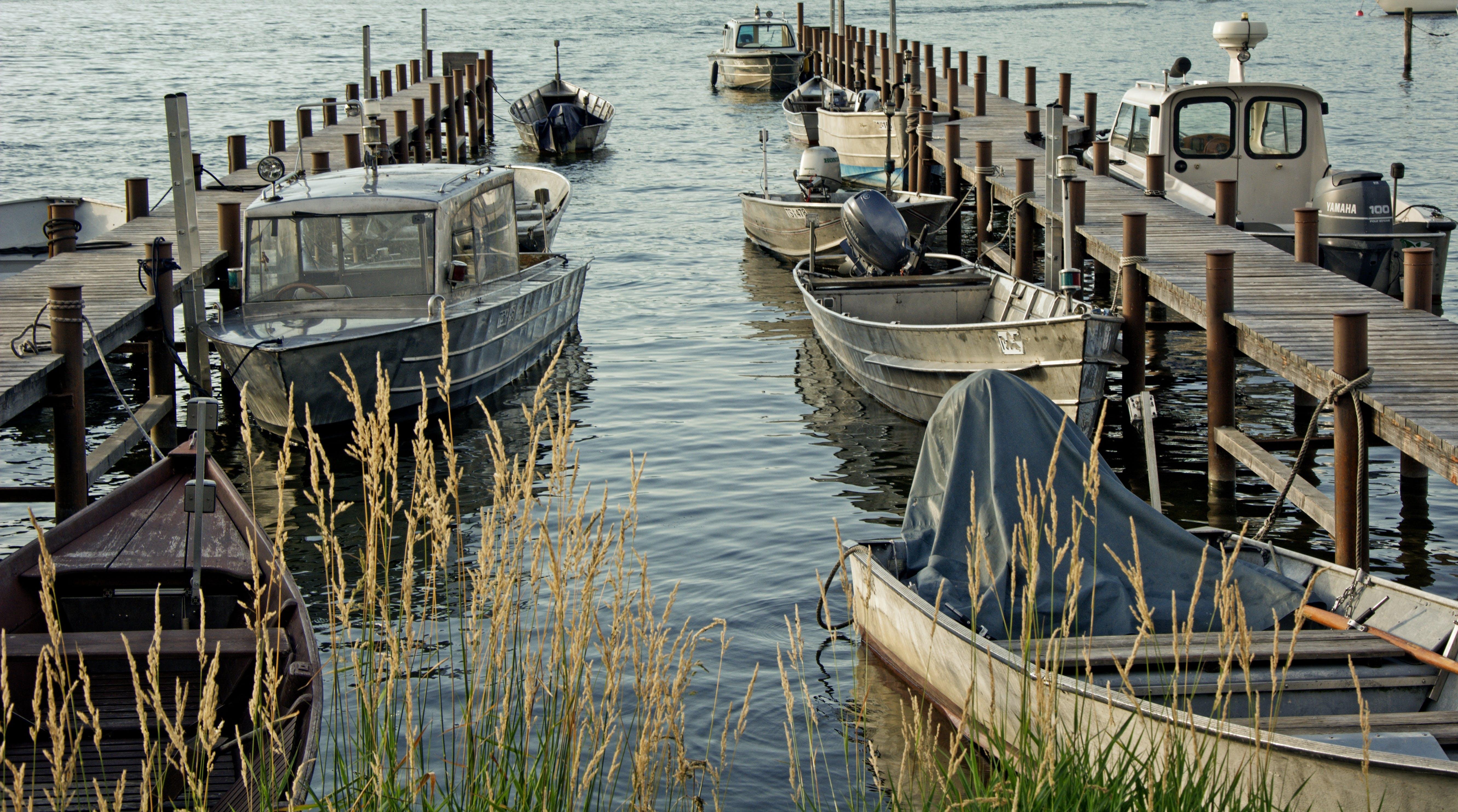 ウォータークラフト, ドック, ブリッジ, ボートの無料の写真素材