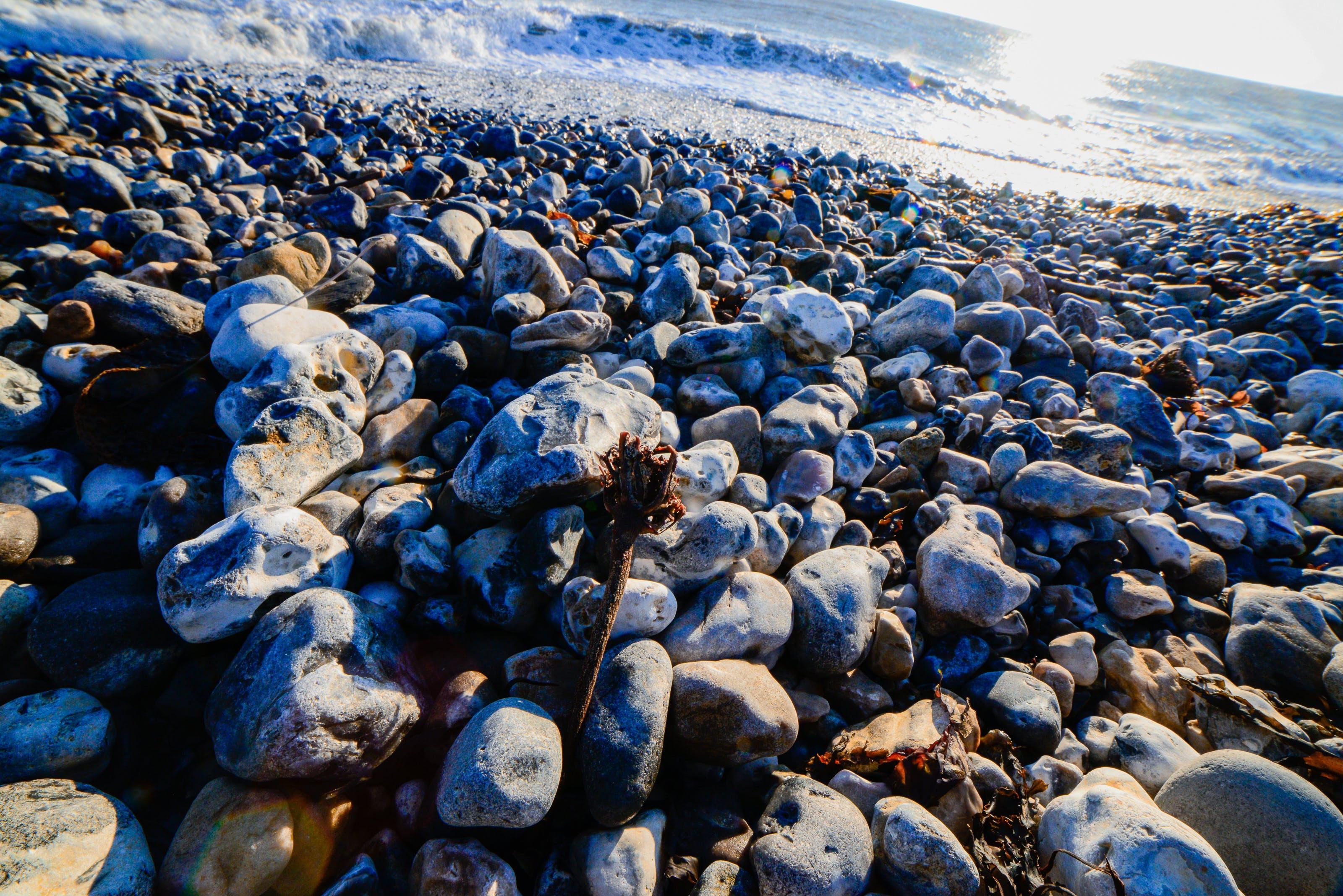 Free stock photo of beach, sea, seaside, stones