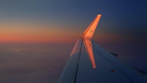 Foto profissional grátis de aeronáutica, aeronave, alvorecer, asa