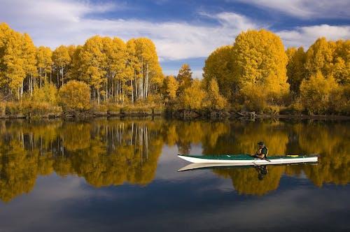 冒險, 反射, 平靜, 景觀 的 免费素材照片