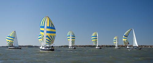Foto profissional grátis de água, barcos, barcos a vela, botes