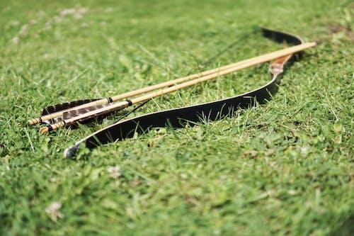 Imagine de stoc gratuită din arc, arc cu săgeți, câmp, fundă