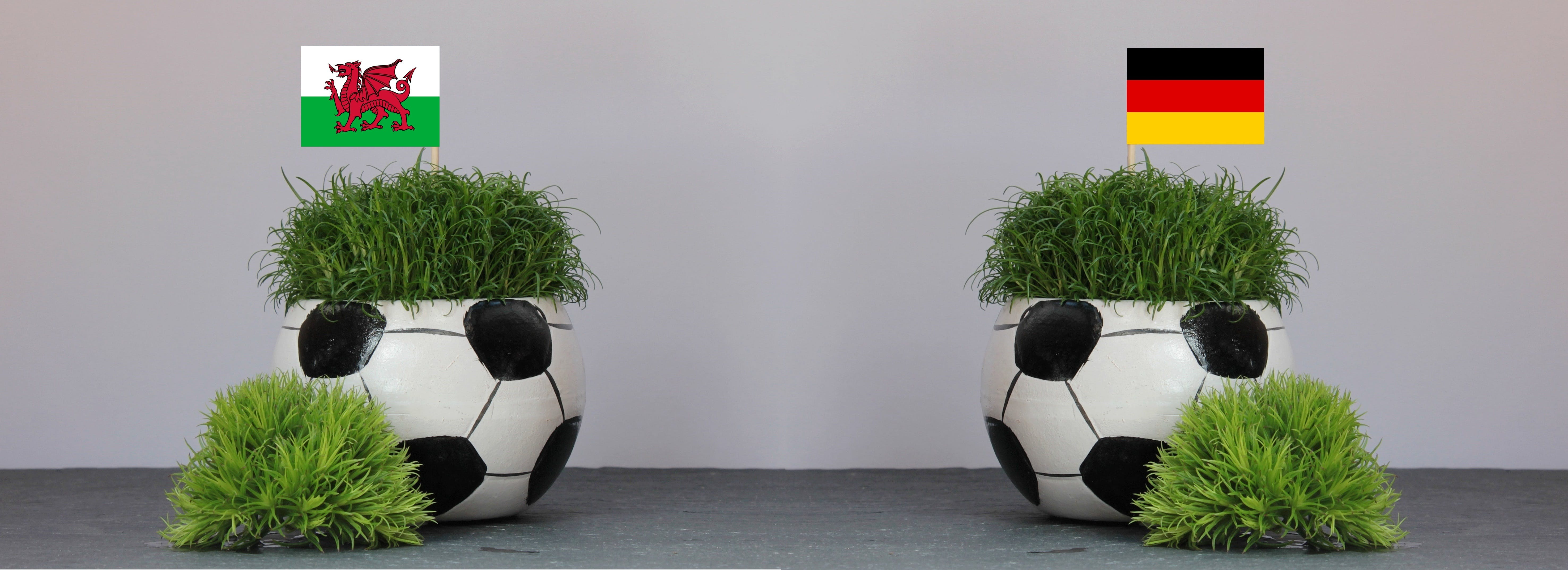 Two White and Black Soccer Ball Pots