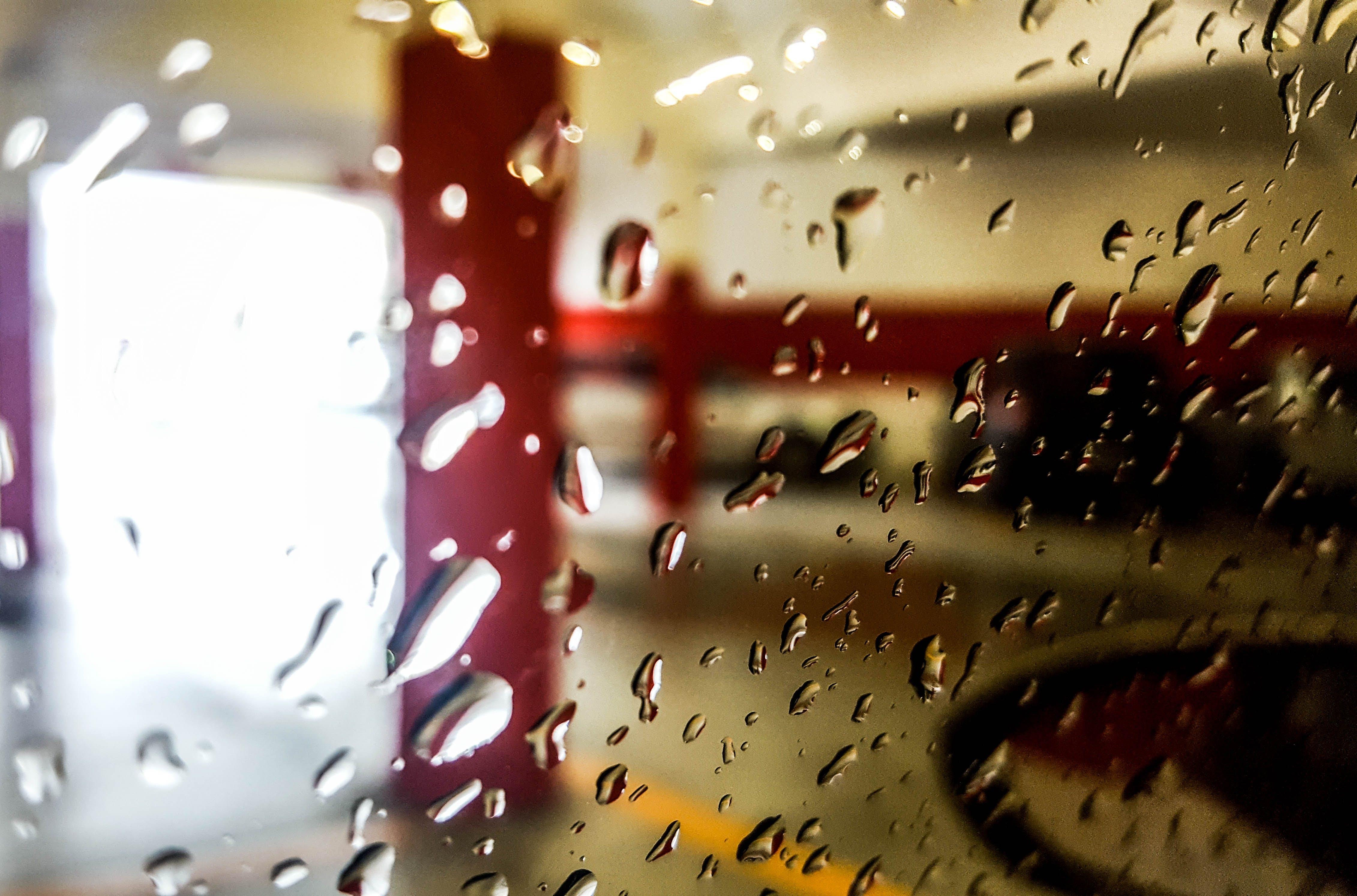 Foto d'estoc gratuïta de clareja, constipat, cotxe, got
