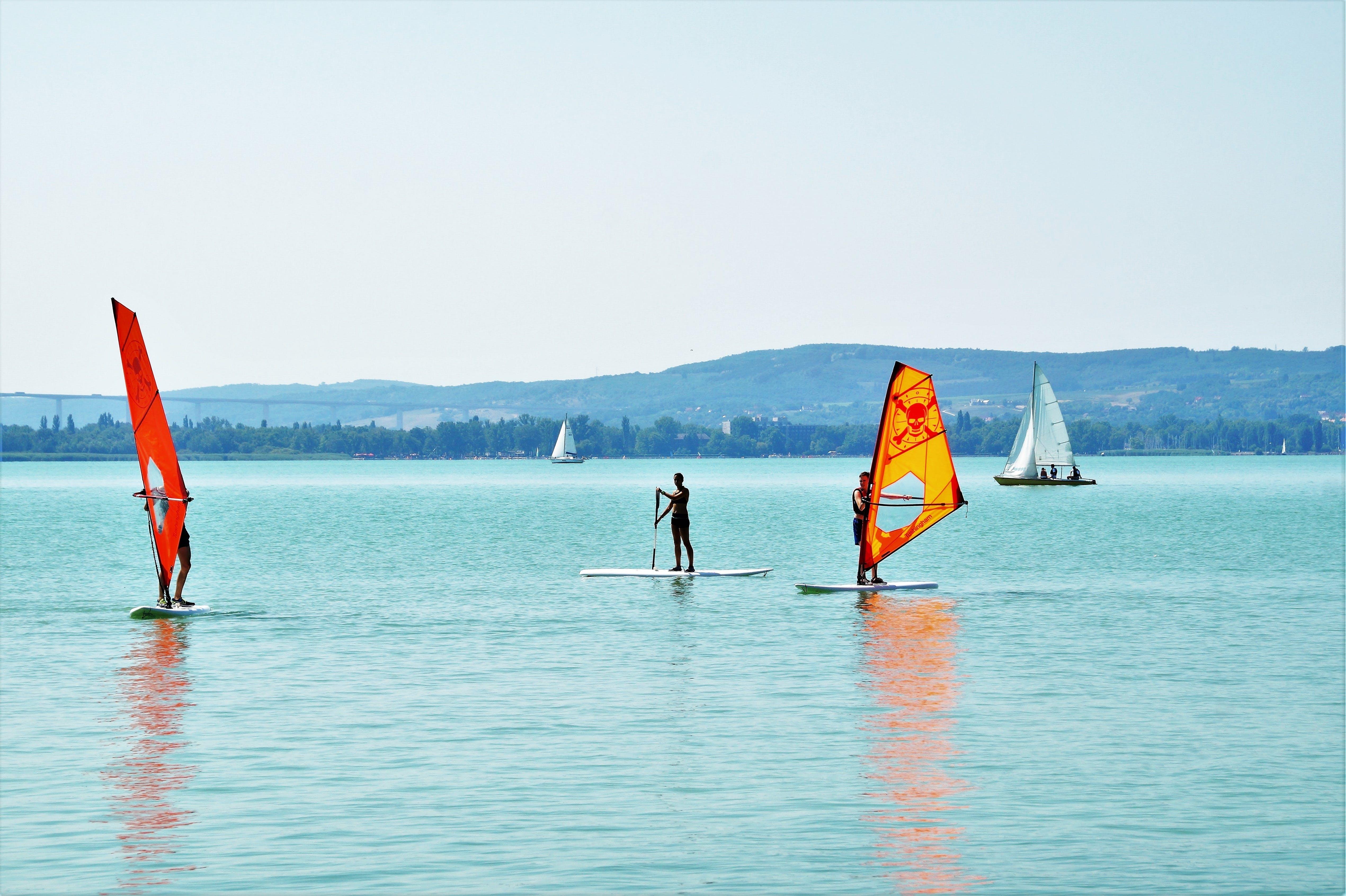 Free stock photo of summer, lake, sail, fun