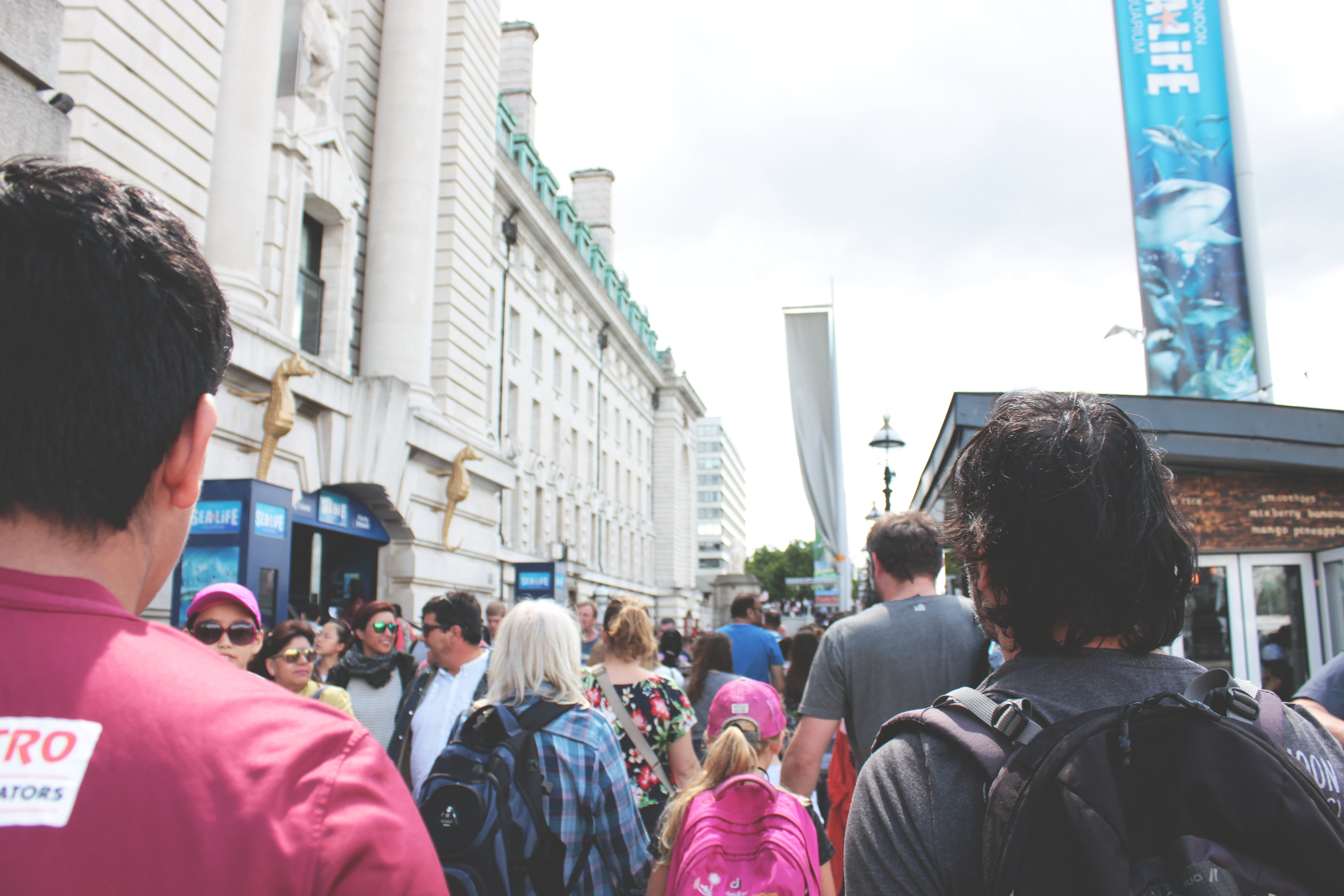 Free stock photo of city, community, crowd, explore