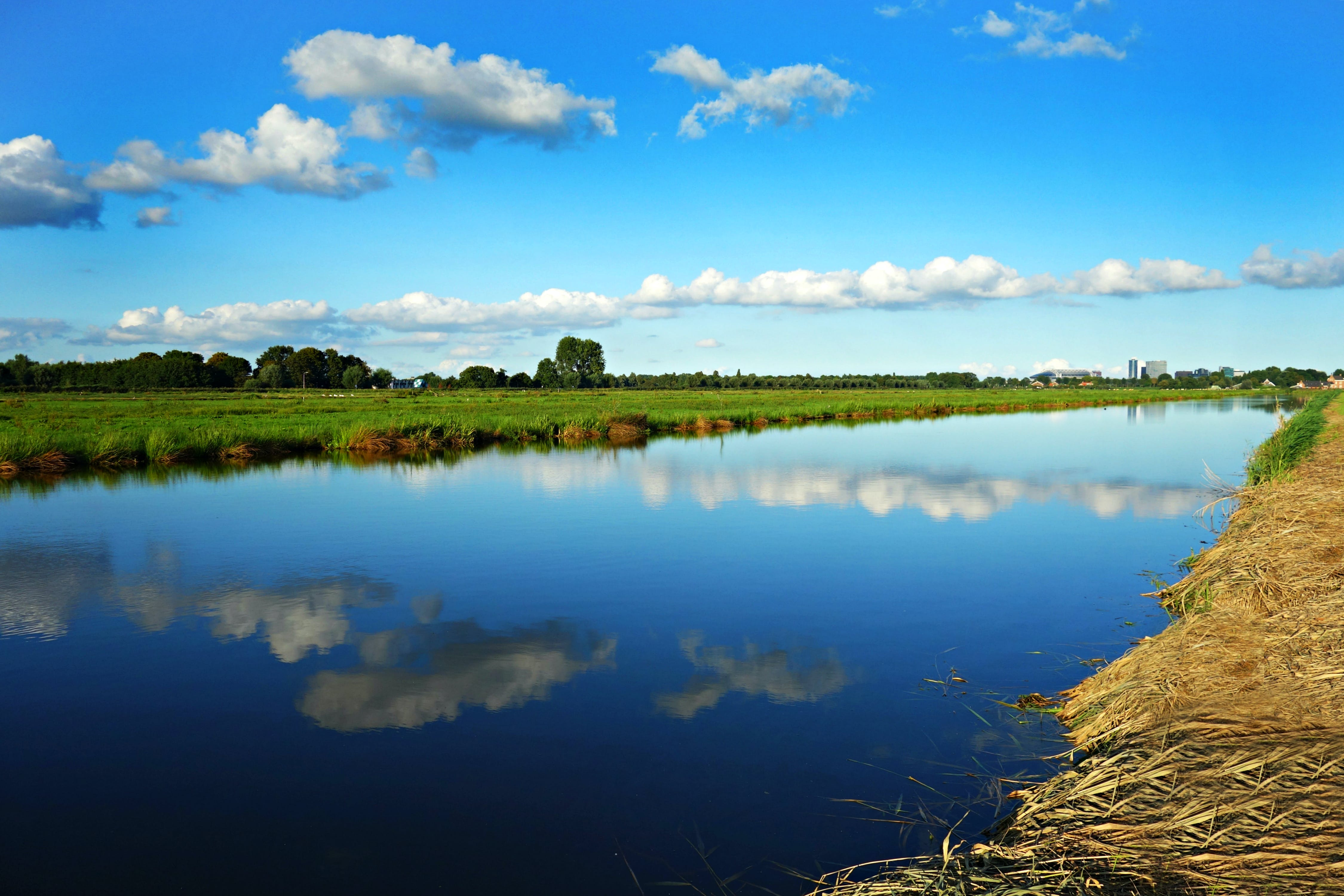 Free stock photo of clouds, Dutch landscape, green, Holland