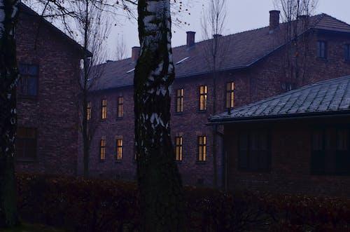 ルーフ, 建築, 窓の無料の写真素材