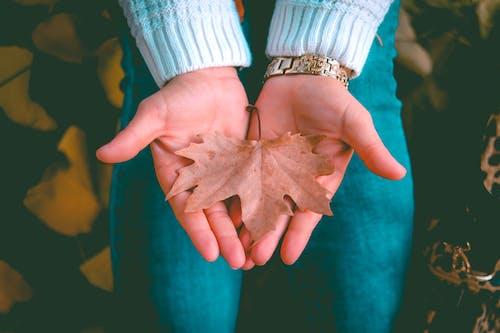 Immagine gratuita di dita, donna, indossare, mani
