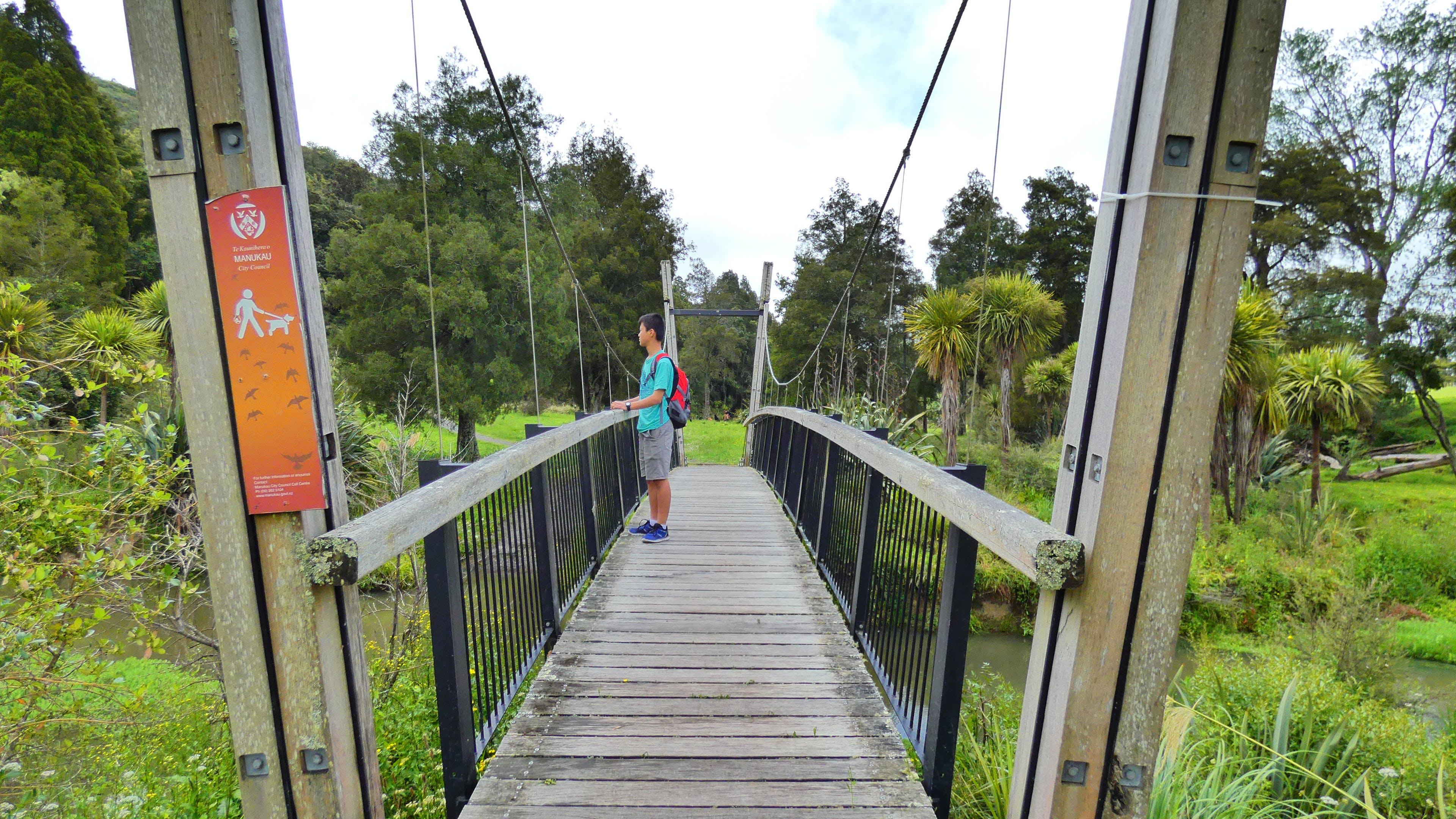 Δωρεάν στοκ φωτογραφιών με γέφυρα, πεζοπορώ