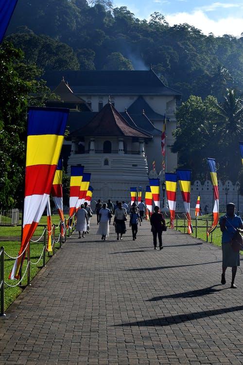 dalada maligawa, 佛寺, 佛牙寺, 佛牙文物寺 的 免费素材照片