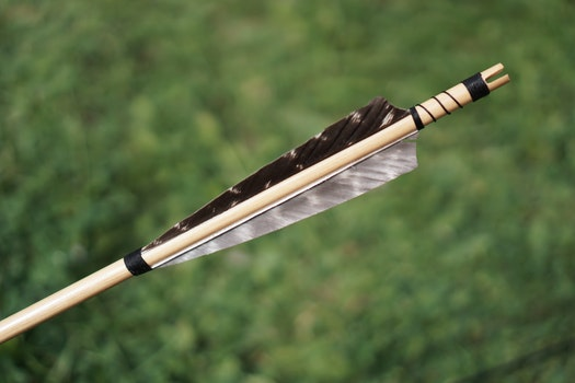 Arrow Feather Stock Selective Focus