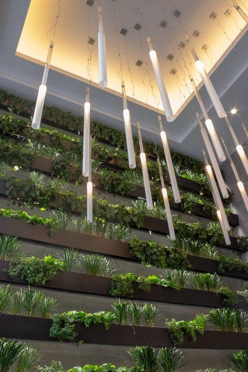 Photos gratuites de centrales, concevoir, intérieur, lumières