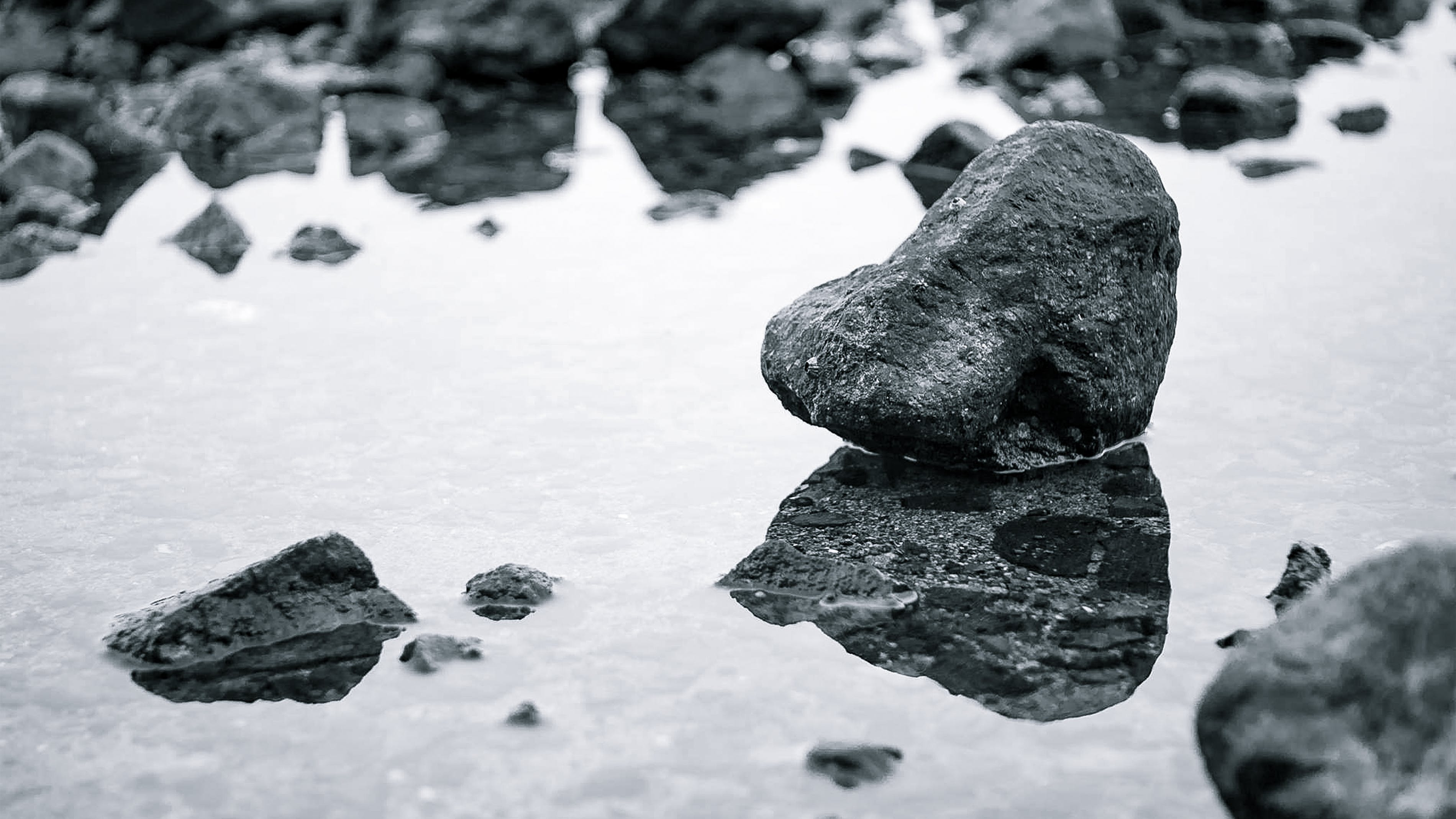 Free stock photo of beach, black and white, reflection, rock