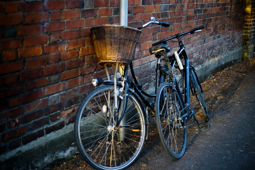 Free stock photo of street, bikes, pavement, bicycles