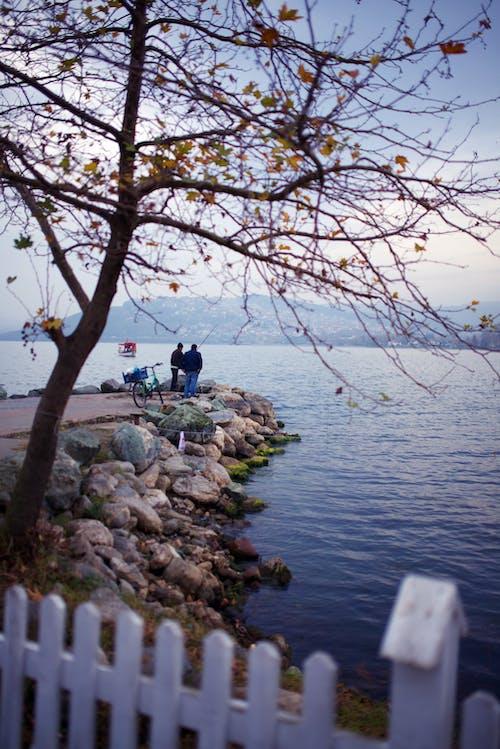 คลังภาพถ่ายฟรี ของ ตุรกี