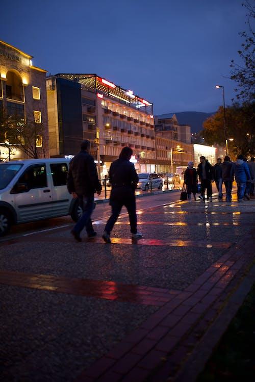 Free stock photo of city lights, night, people