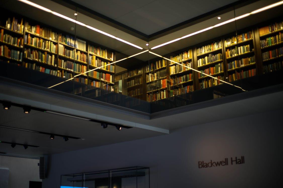 biblioteca, conhecimento, dentro de casa