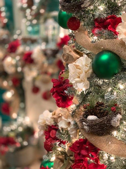 Immagine gratuita di albero di natale, buon natale, corona, decorazioni natalizie