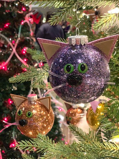 Immagine gratuita di decorazione natalizia, decorazioni natalizie