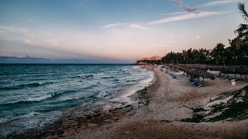 Безкоштовне стокове фото на тему «берег, берег моря, вечір, відпустка»