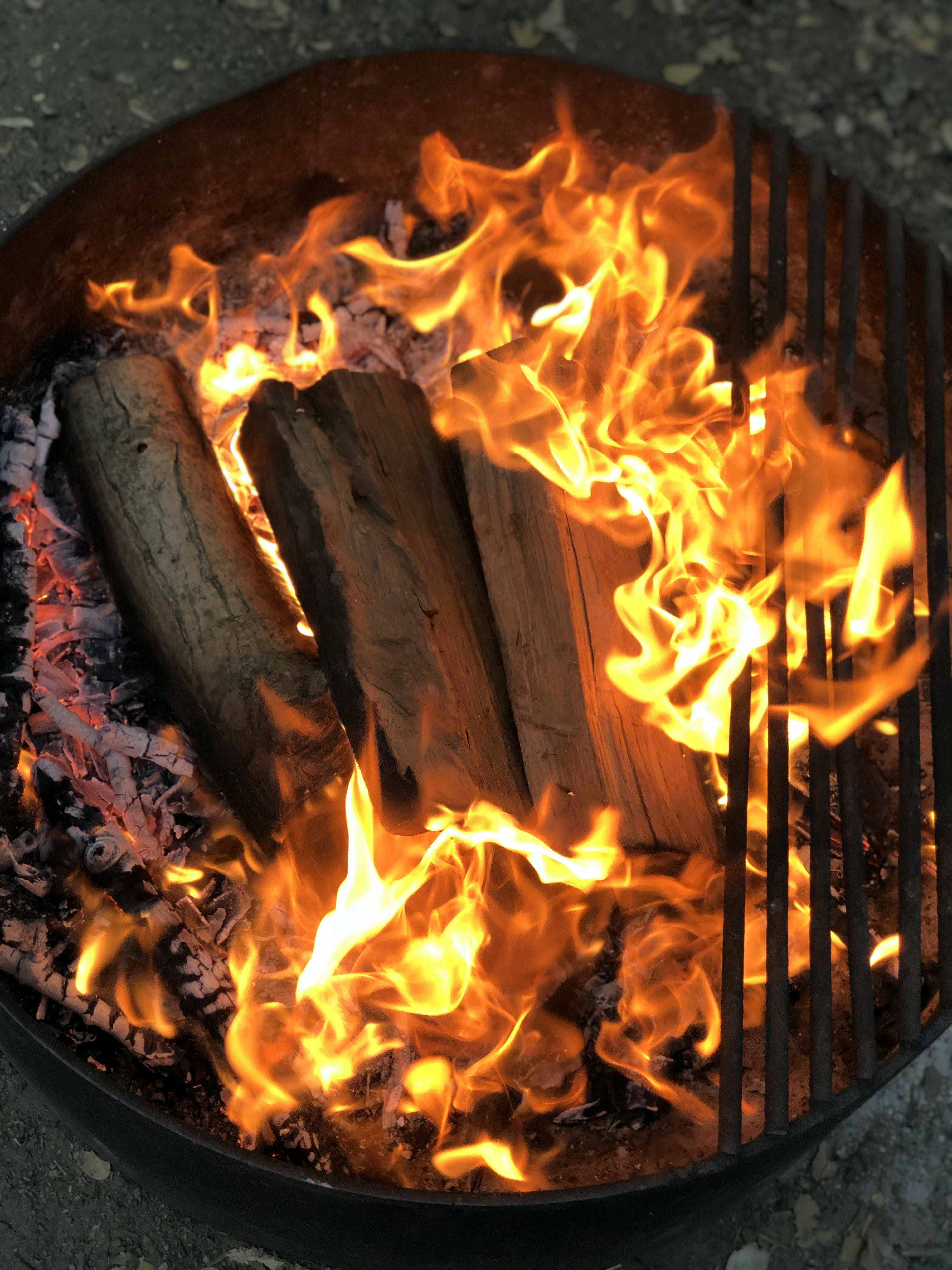 Free stock photo of campfire, camping, fire