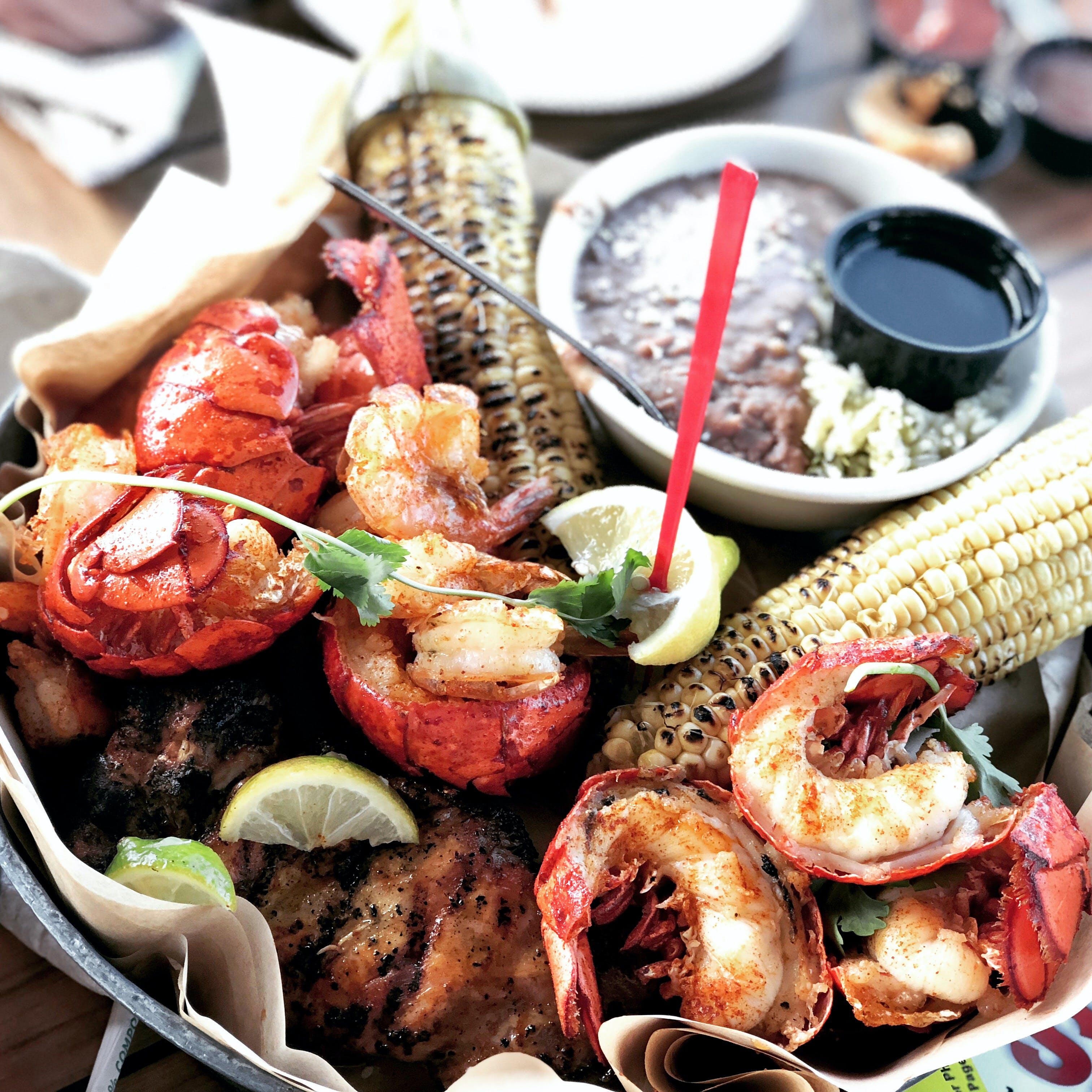 Free stock photo of aquarium, bajabucket, chicken, lobster