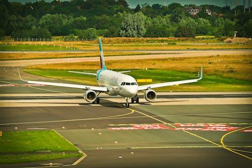 Foto d'estoc gratuïta de aeroport, ales de l'avió, arbres, asfalt
