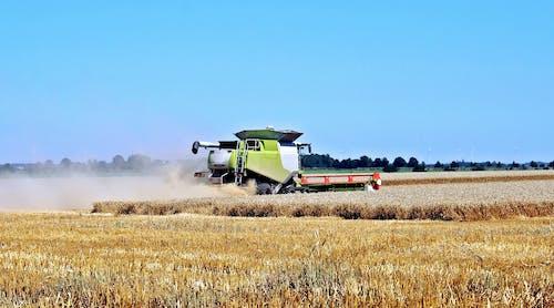 Gratis lagerfoto af afgrøde, agerjord, bane, dyrket jord