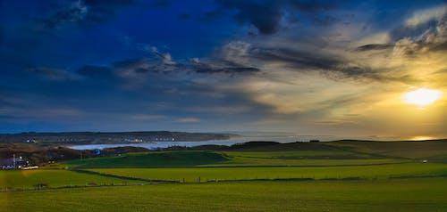 Foto d'estoc gratuïta de alba, camp, camp d'herba, camp verd