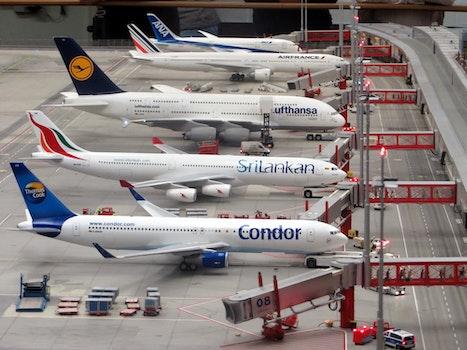 Kostenloses Stock Foto zu fahrzeug, flughafen, flugzeug, jet