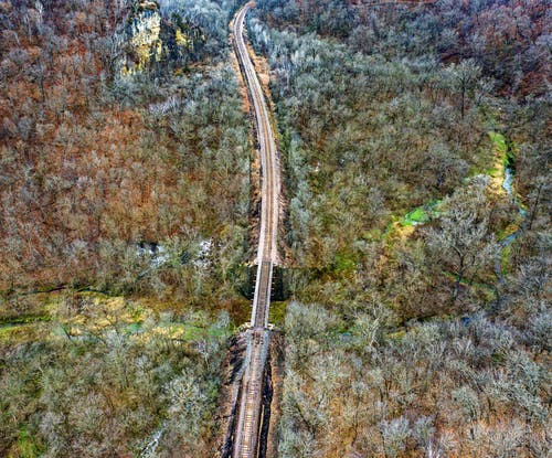 Train Track Between Green Trees Aerial Photography