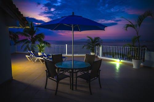 Fotobanka sbezplatnými fotkami na tému balkón, dáždnik, dlaň, exotický