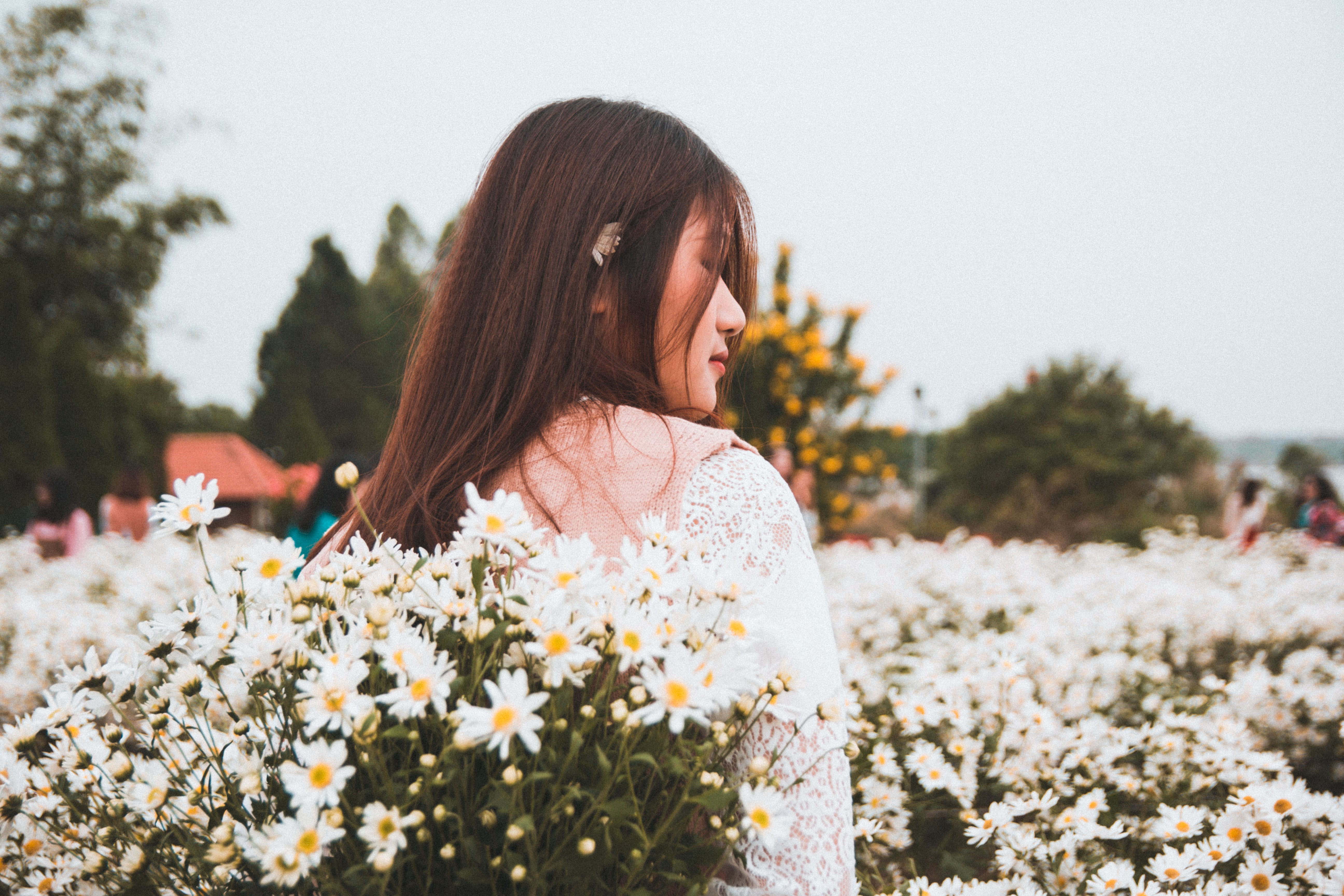 Woman Standing Near White Daisy Flowers