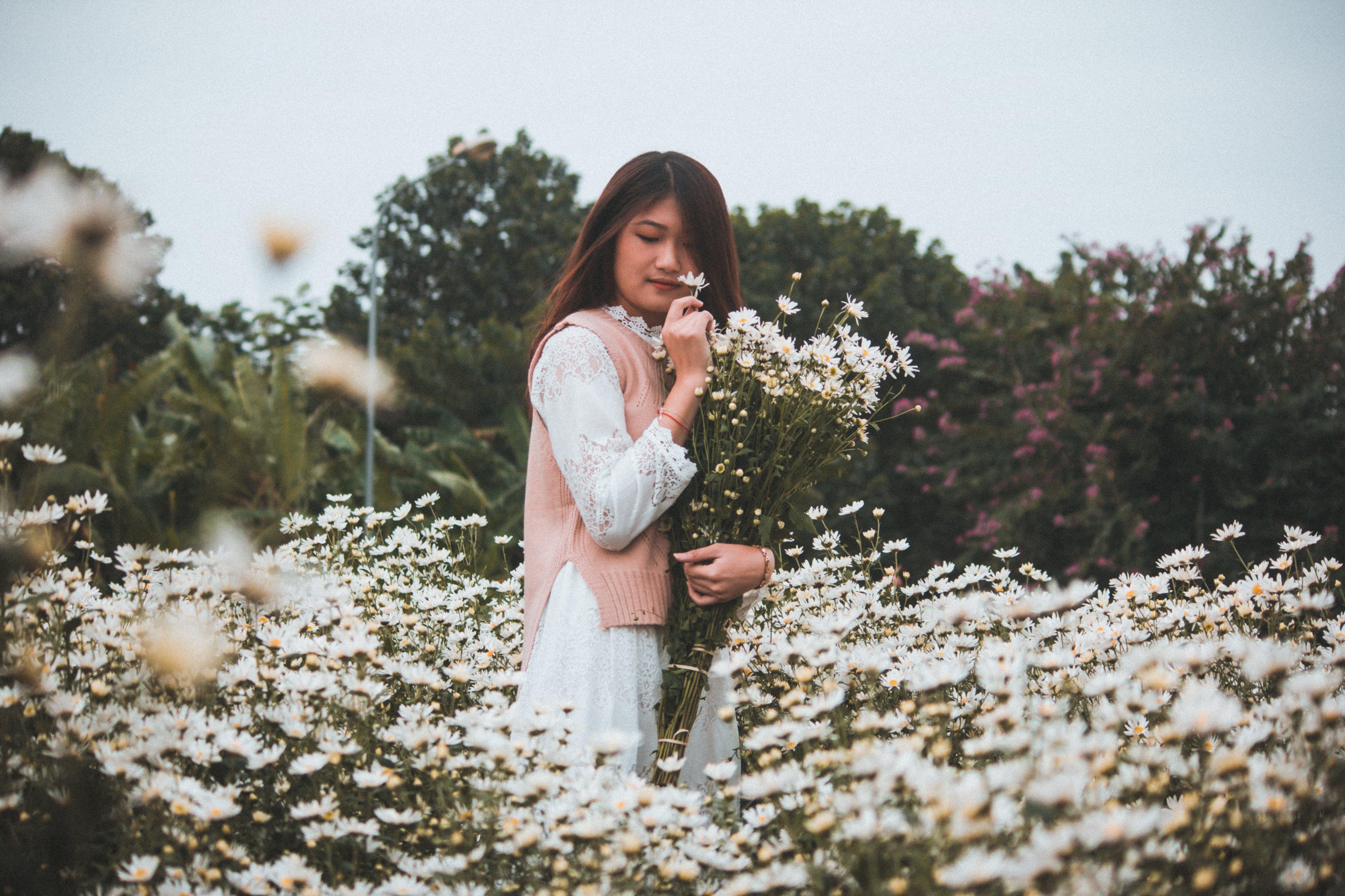 alan, aşındırmak, Asyalı kadın, bitki örtüsü içeren Ücretsiz stok fotoğraf